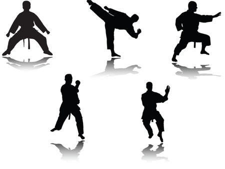 kungfu:  karate player with shadow - vector Illustration