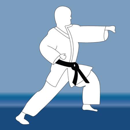 karate fighter: karate player silhouette - vector Illustration