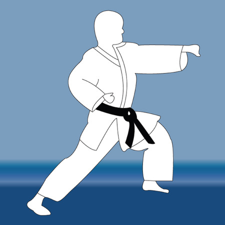 karate player silhouette - vector