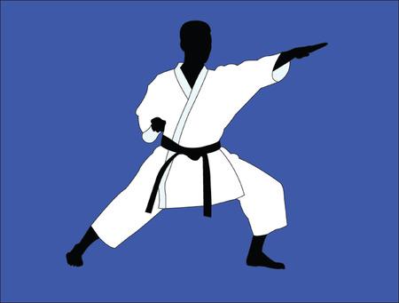 kyokushin: karate player - vector