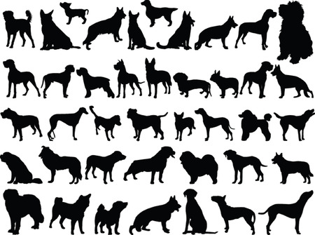 big collection of dogs - vector Vector