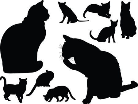 cat collection - vector Illustration