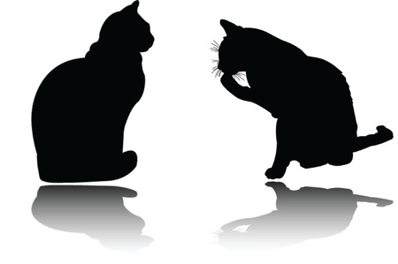 two cat with shadow Vector