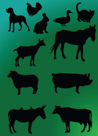 domestics: domestics animal with background Illustration