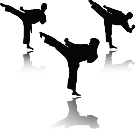combat: karate fighter with shadow  Illustration