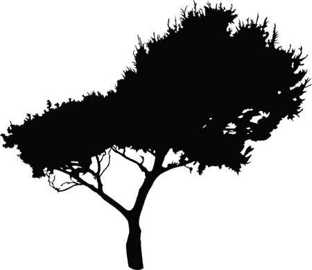 solitude: tree 2 -  vector Illustration