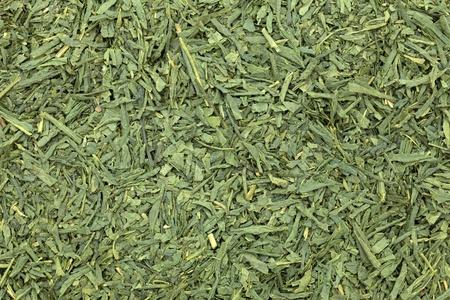green tea leaves  photo