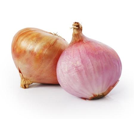 Onion on a white background  photo