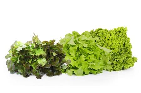 vibrat: Lettuce on a white background