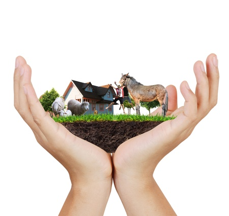 Agriculture in the hand  photo
