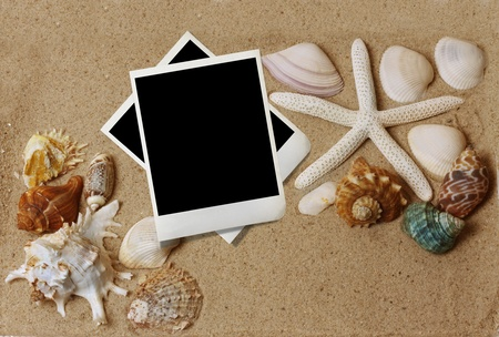 shells with sand and paper  photo