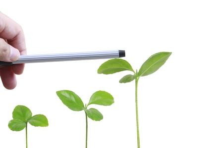 hand plant  Stock Photo