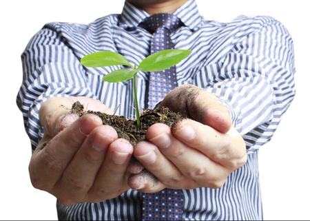 compost: plant in hands