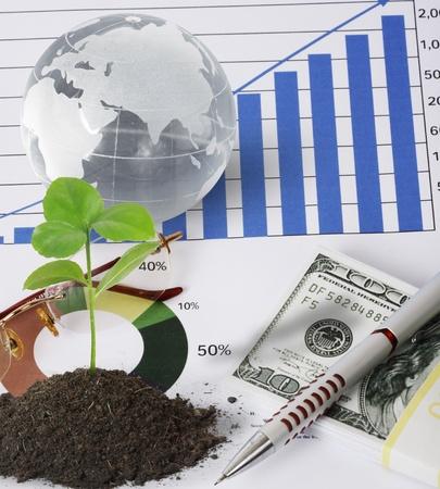 plant, and finances  photo