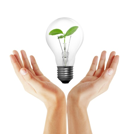 energy save: Light bulb in hand