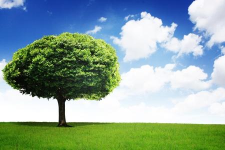 cgi: green field with an tree