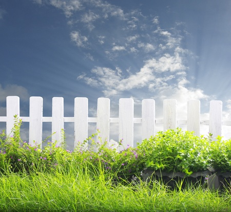 White fence and green grass  photo