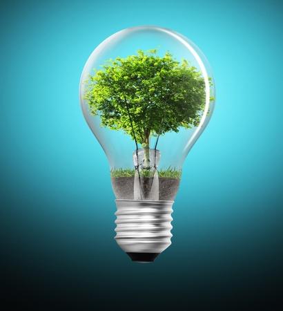 arbol de problemas: Árbol en una bombilla