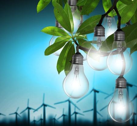 Lightbulb Stock Photo - 11709565
