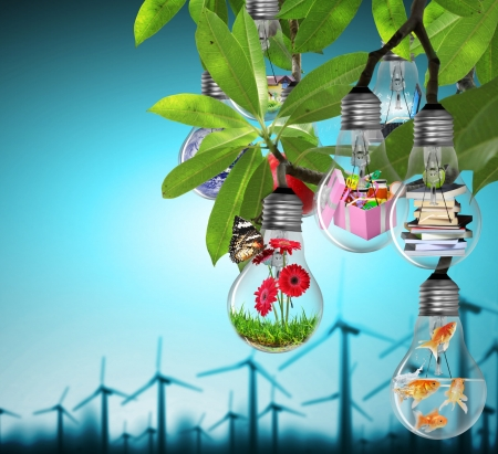 sustainable energy: Lightbulb