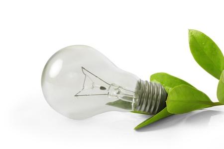Lightbulb Stock Photo - 11709168