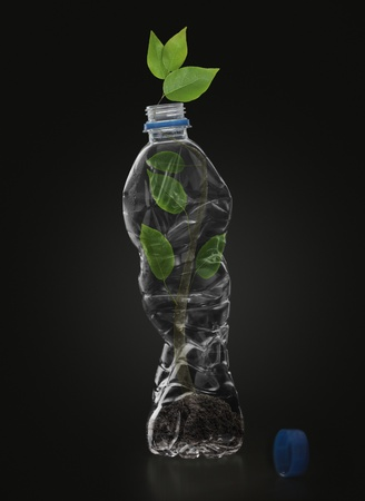 recycling, water bottles  photo