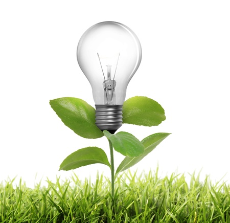 energy conservation: Light bulb  Stock Photo