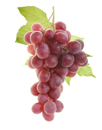 red grape  photo