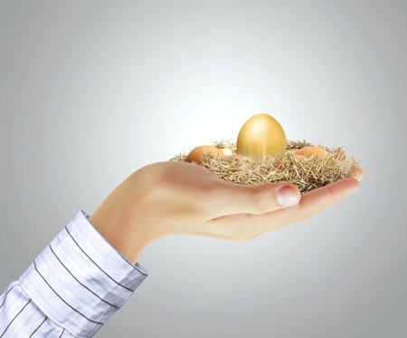 priceless: golden egg in hand on a gray background