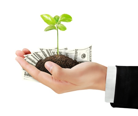 Business man with Dollar and plant in hand Stock Photo - 13544450