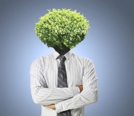 businessmen ,Ideas Head Trees  photo