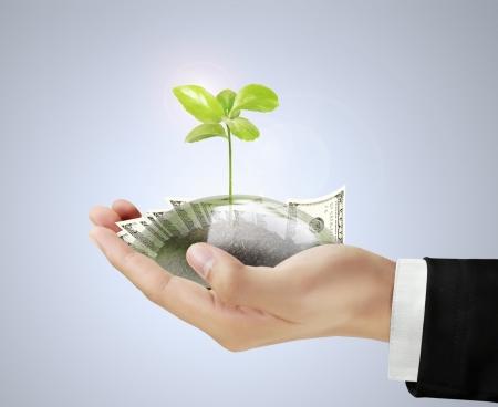 Saving money concept in hand businessmen photo