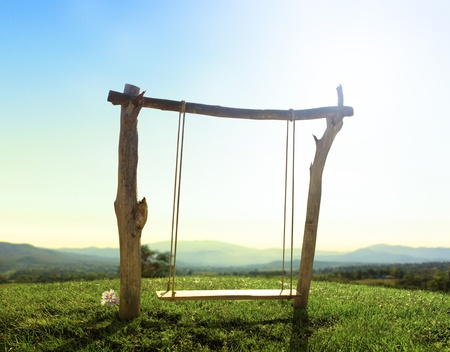 Wood swing in the green garden photo