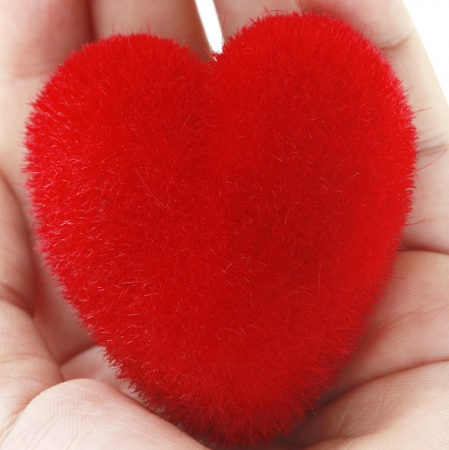 Red heart in womans hands, on white background photo