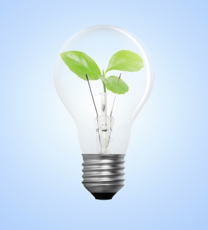 Idea ,light bulb Alternative energy concept  Stock Photo - 17572093