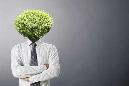 businessmen ,Ideas Head Trees
