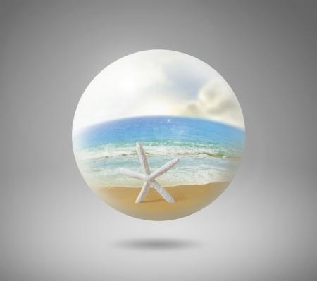 starfish beach: Beach in white sphere isolated on gray