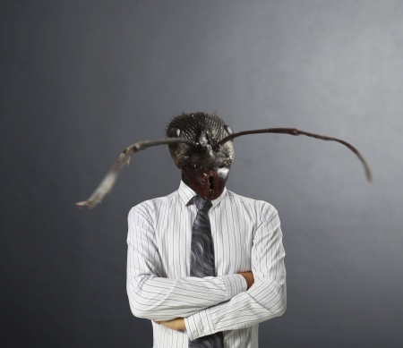 businessmen, Ideas Head ants Stock Photo - 19454333