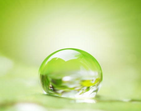bubbles: green leaf and water drop on it shallow dof