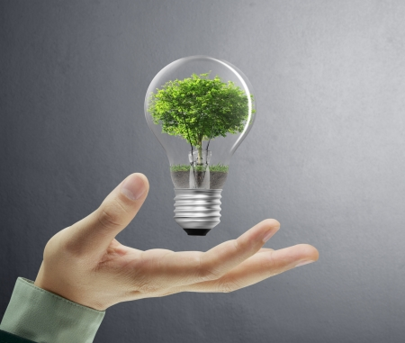 solutions: Light bulb, in a hand  Stock Photo