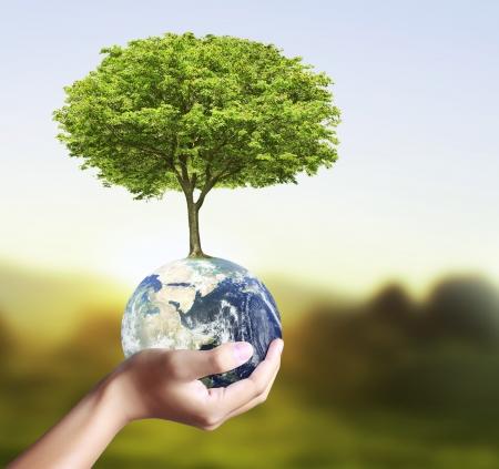그의 손에 빛나는 지구 글로브와 나무를 들고