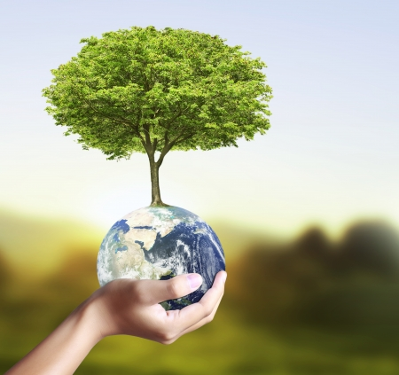 holding a glowing earth globe and tree in his hand