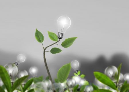 アイデア電球代替エネルギー概念 写真素材