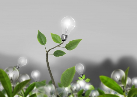technological: Idea ,light bulb Alternative energy concept