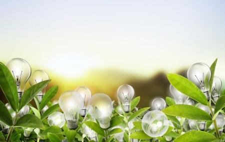 Idea, Alternative bombilla concepto de energía Foto de archivo - 23984790