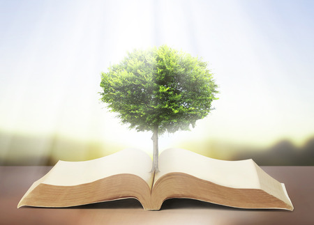 knowledge tree: book of nature with grass and tree growth