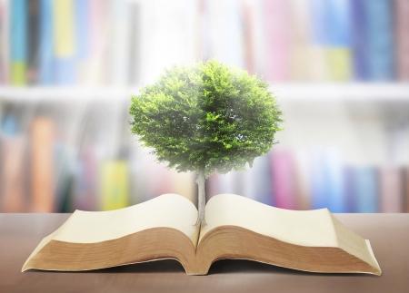 boek van de natuur met gras en bomen groei
