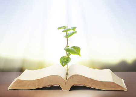 book of nature with grass and tree growth Imagens