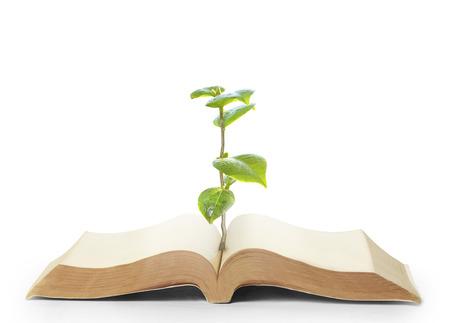 boek van de natuur met gras en boomgroei