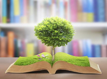 boek met een boom Stockfoto